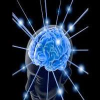 Curso de Neurociência e Aprendizagem