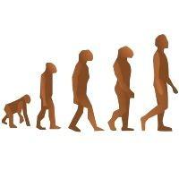 Origem da Vida e Evolução – Curso para ENEM e Vestibular
