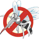 Curso sobre Dengue – Aprenda a identificar e combater