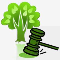 Curso de Direito Ambiental internacional