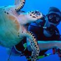 Curso de Oceanografia – USP
