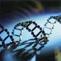 Curso de Genética para Vestibular – Biologia