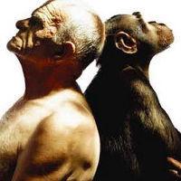 Curso de Teorias sobre Evolução