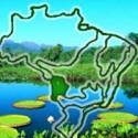 Biomas do Brasil – Curso de Biologia