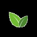 Curso para o Cadastro Ambiental Rural (CapCAR)
