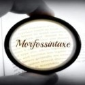 Curso de Morfossintaxe – Português