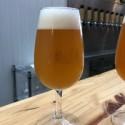 Curso de fabricação de Cervejas Azedas